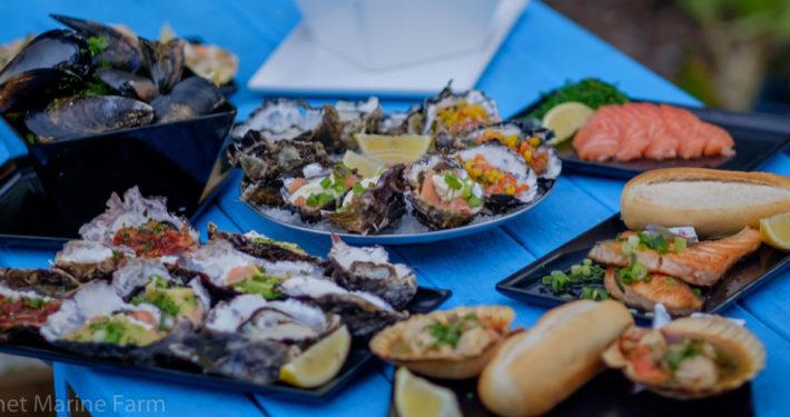 Wineglass Bay Tour, Hobart Day Tour, Tasmania Tours, Freycinet Marine Farm Lunch